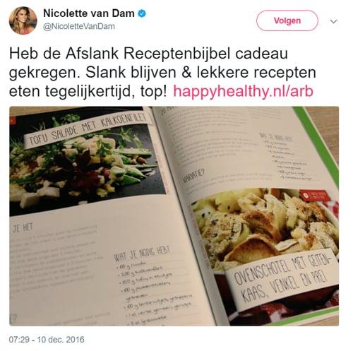 Afslank Receptenbijbel Nicolette van Dam