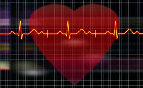 Wat is de beste hartslag om vet te verbranden?